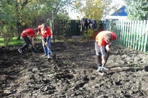 Волонтеры, добровольцы, помощники