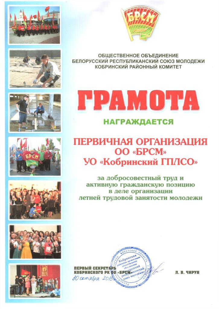 diplom-2013-16